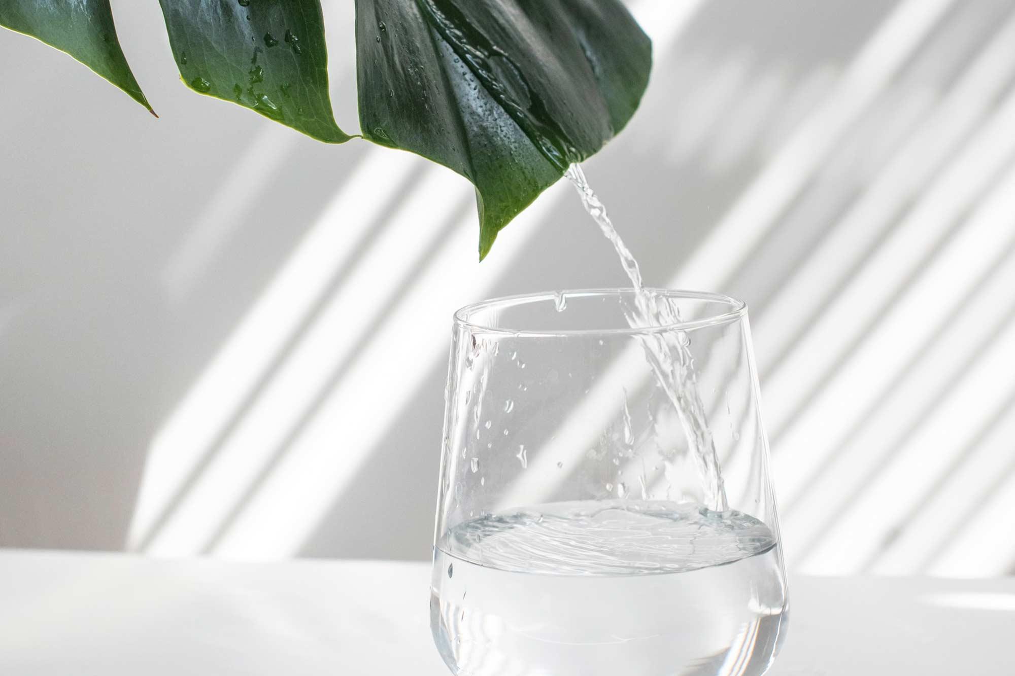 Unser Wasser - Ihre Qualität